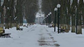 Aleia vazia no parque no inverno Ele ` s que neva no parque filme