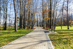 Aleja biega przez miasto parka w Zakopane Fotografia Stock