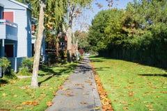 Aleja obok kompleksu apartamentów; spadać liście na ziemi na słonecznym dniu obraz royalty free