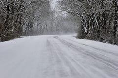 Aleja w śnieżnym ranku Fotografia Stock