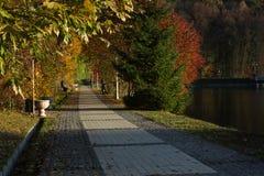 Aleja w jesień parku kiev Fotografia Royalty Free