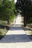 Przejście w las Zdjęcie Stock
