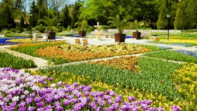 Aleja w ogródach Balchik pałac, Dobrich prowincja, Bułgaria zdjęcia stock
