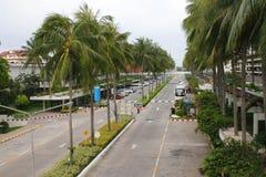 Aleja z drzewkami palmowymi Zdjęcia Stock