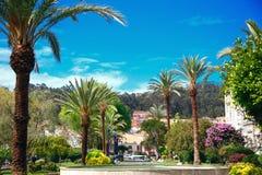 Aleja z drzewkami palmowymi, piękny widok wzgórze, wiele kwiaty, wielka droga z pięknym widokiem obraz stock