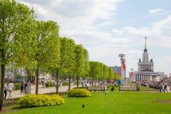 Aleja z wapno drzewami przy VDNKh Zdjęcia Royalty Free