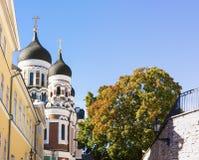 Aleksander Nevski cathedral in Tallinn, Estonia Royalty Free Stock Photos