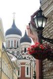 Aleksander nevskij katedra w starym miasteczku Tallin Zdjęcia Royalty Free