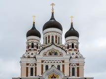 Aleksander Nevsky Ortodoksalna katedra w Tallinn Starym miasteczku, Est Obraz Royalty Free