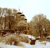 aleksandr nevski塔林寺庙 免版税图库摄影