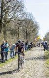 Aleksejs Saramotins dans la forêt d'Arenberg- Paris Roubaix 201 Photo stock