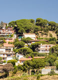 Alella village. On the outside of Barcelona, you see in the background are the houses on a sunny day. It´s a vertical picture Stock Image