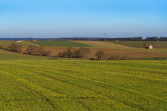 Alemania, Baviera Campos de la primavera Fotos de archivo