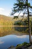 Alemania, lago Arbersee Foto de archivo