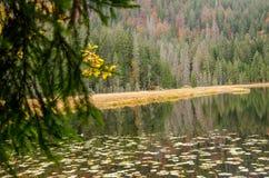 Alemania, lago Arbersee Imagenes de archivo