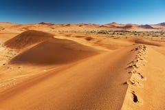 Fotspår på sanddynen Arkivfoton
