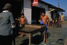 alenqueramazon handfat brazil fotografering för bildbyråer
