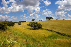 Alentejo Royalty Free Stock Photography