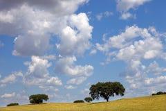 Alentejo Royalty Free Stock Photography