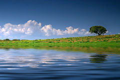Alentejo Landscape Royalty Free Stock Photos
