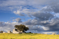 Alentejo landscape Stock Photo