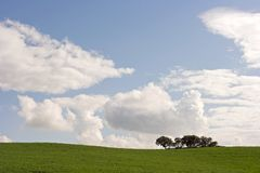Alentejo plain Royalty Free Stock Photography