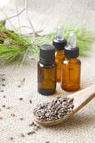Aleppo pine essential oil. Royalty Free Stock Image