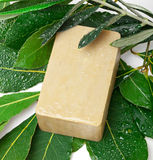 Aleppo soap and laurel stock photos