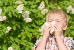 Alergia Imagens de Stock