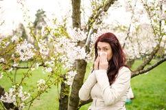 Alergia Imágenes de archivo libres de regalías