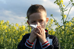 Alergia Foto de Stock Royalty Free