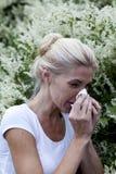 Alergia da estação Fotografia de Stock