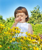 Alergia da febre do pólen Imagens de Stock Royalty Free