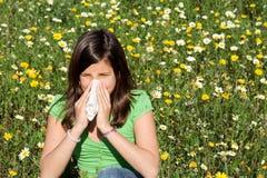 Alergia de Hayfever Fotografía de archivo