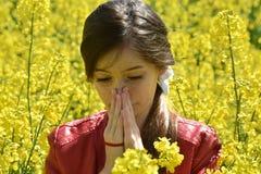 Alergia del polen Imagen de archivo libre de regalías