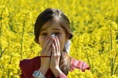 Alergia del polen Fotos de archivo libres de regalías