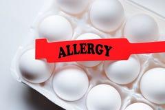 Alergia do ovo Fotografia de Stock