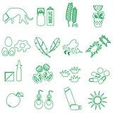 Alergia i allergens zieleń zarysowywamy ikona ustawiającego eps10 Obraz Stock