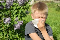 Alergia para florescer o p?len, mola, menino com len?o foto de stock royalty free