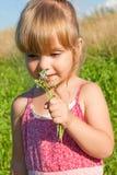 Alergias às flores Fotografia de Stock