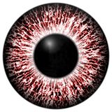 Alergic eye 3d red texture with black fringe. And lines Royalty Free Stock Images