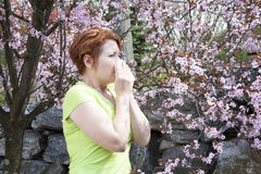 alergie sezonowe obraz stock
