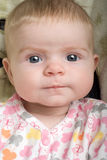 Alert Baby with Bemused Expression Stock Photography