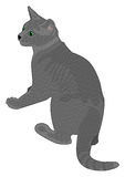 Alert Grey Cat. Vector drawing of an alert grey cat with emerald green eyes Stock Images