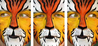 Alert Tiger Man Stock Photography