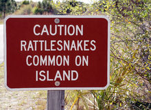 Alerta de la serpiente de cascabel imagenes de archivo