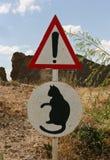 Alerta do gato imagem de stock