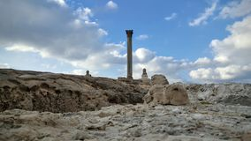 Alessandria d'Egitto adorabile Fotografia Stock