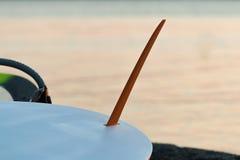 Aleta da prancha contra o oceano foto de stock royalty free