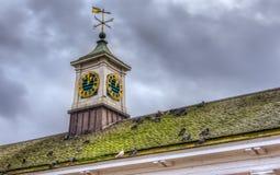 Aleta de tempo no telhado Foto de Stock Royalty Free